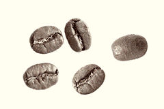 Coffee beans on a white background Stock Photos