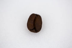 Coffee beans on white background. Copyspace Royalty Free Stock Photo