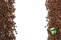 Coffee beans  on white background. With place for text Stock Images