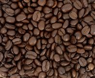 Coffee: Beans Royalty Free Stock Images