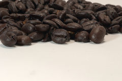 Coffee beans. White coffee bean with a variety of shapes and compositions Stock Images