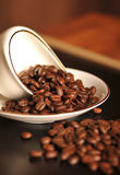 Coffee beans and white coffee cup Royalty Free Stock Images