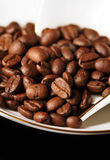 Coffee beans and white coffee cup Royalty Free Stock Photo