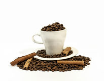 Coffee beans in a white coffee cup with four cinnamon stick Stock Images