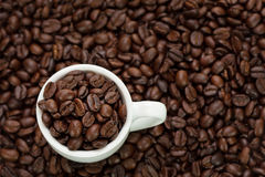 Coffee beans and white cup. Taken from top view used as background Stock Photo