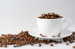 Coffee beans with white cup Royalty Free Stock Image