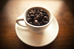 Coffee Beans in a White cup Royalty Free Stock Images