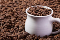 Coffee beans and white cup Royalty Free Stock Photo