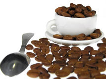 Coffee beans in white cup. Coffe cup and teaspon Stock Image