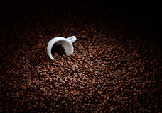 Coffee beans with white cup Stock Image