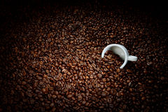 Coffee beans with white cup Stock Photo