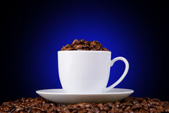 Coffee beans in a white cup on a black background Royalty Free Stock Photo