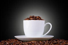 Coffee beans in a white cup on a black background Stock Image