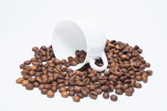 Coffee beans a transparent background Royalty Free Stock Photography