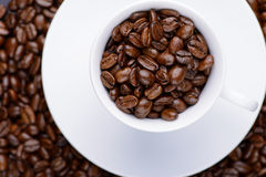 Coffee beans in white cup Stock Images