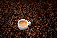 Coffee beans with white cup espresso Stock Images