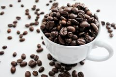 Coffee beans in white cup. Coffee beans in white cup and some fall down spread on white background. Sellected focus royalty free stock photography
