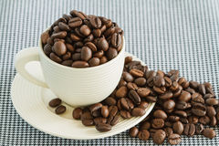 Coffee beans in white cup Stock Photos