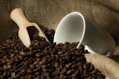 Coffee beans with white cup and wood spoon . Royalty Free Stock Photography