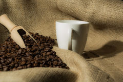Coffee beans with white cup and wood spoon . Royalty Free Stock Images