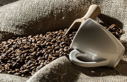 Coffee beans with white cup and wood spoon . Royalty Free Stock Image