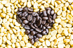 Coffee beans on the white ground Stock Photography