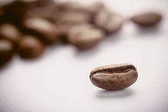 Coffee Beans On White. Some coffee beans are on the white background stock images