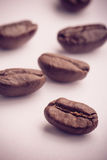 Coffee Beans On White. Some coffee beans are on the white background royalty free stock photo