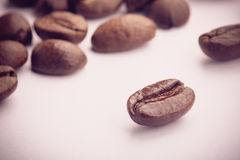 Coffee Beans On White. Some coffee beans are on the white background Stock Photos