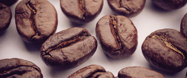 Coffee Beans On White. Some coffee beans are on the white background Royalty Free Stock Photography