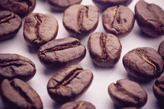 Coffee Beans On White. Some coffee beans are on the white background royalty free stock image