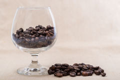 Coffee beans. In a wine glass Royalty Free Stock Image
