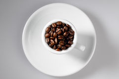 Coffee beans in withe cup Royalty Free Stock Photography