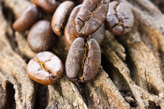Coffee beans on wood Stock Images