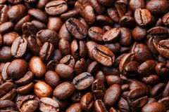 Coffee beans. On wood background Stock Image
