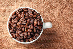 Coffee beans. On wood background stock images