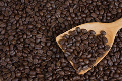 Coffee beans in wood ladle Stock Image