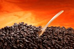 Coffee beans with wood spoon Royalty Free Stock Image