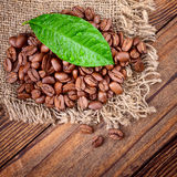 Coffee beans on wood texture Stock Images