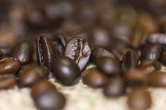 Coffee beans. Coffee beans on a wooden background Royalty Free Stock Images