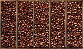 Coffee beans in wooden box close-up Stock Image