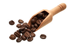 Coffee beans in a wooden scoop. Food ingredients: heap of dark roasted coffee beans in a wooden scoop, on white background Stock Photography