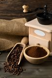Coffee beans in wooden scoop and ground coffee with coffee bean Stock Images