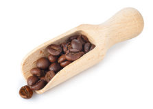 Coffee beans on wooden scoop. Roasted coffee beans on wooden scoop isolated on white background. Coffee beans isolated on white Stock Image