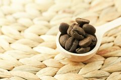 Coffee beans in a wooden spoon Stock Images