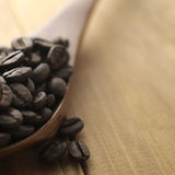Coffee beans and wooden spoon Stock Images