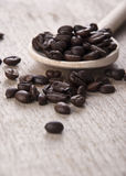 Coffee beans on wooden spoon. Close up Stock Images