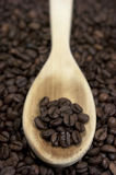 Coffee beans. Wooden spoon Royalty Free Stock Images
