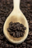 Coffee beans. Wooden spoon Stock Photography