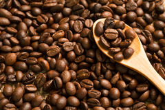 Coffee beans on a wooden spoon Royalty Free Stock Photography